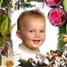 julekortfoto-aarhus